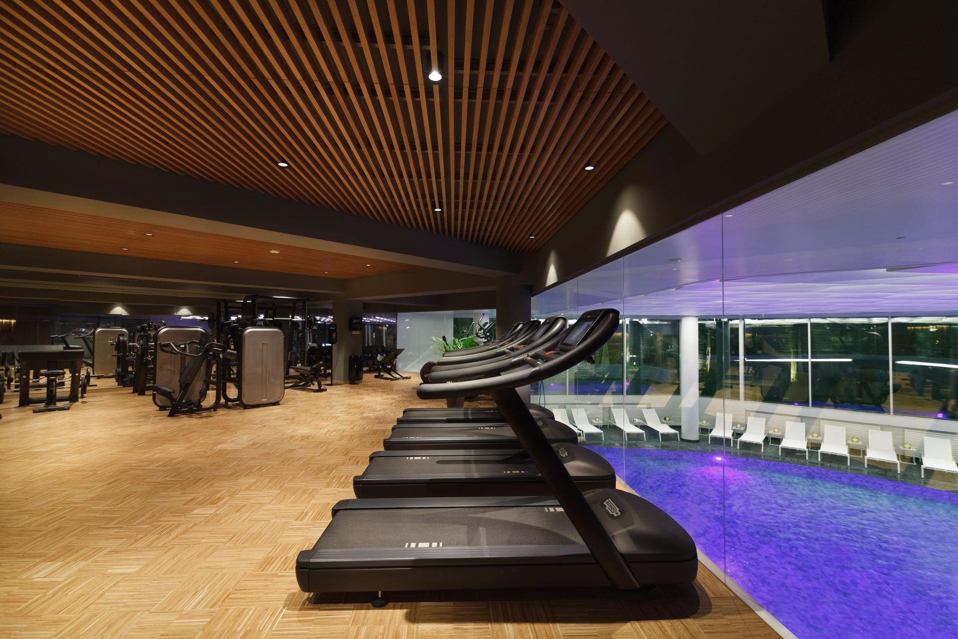 Fitness / Ana Wellness & SPA Crowne Plaza Bucuresti